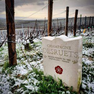 Vignoble Champagne Joseph Desruets